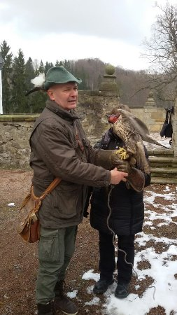 Lauenstein, Tyskland: Der Falkner hat uns viel über die stolzen Tiere erzählt.