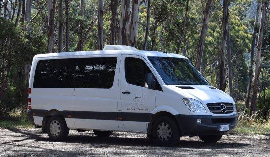 Eco Tours Tasmania