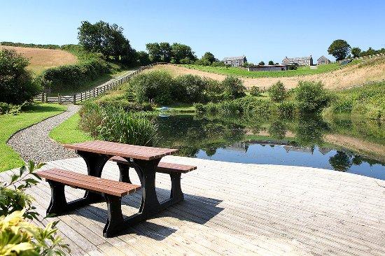 Camelford, UK: Helsbury pond