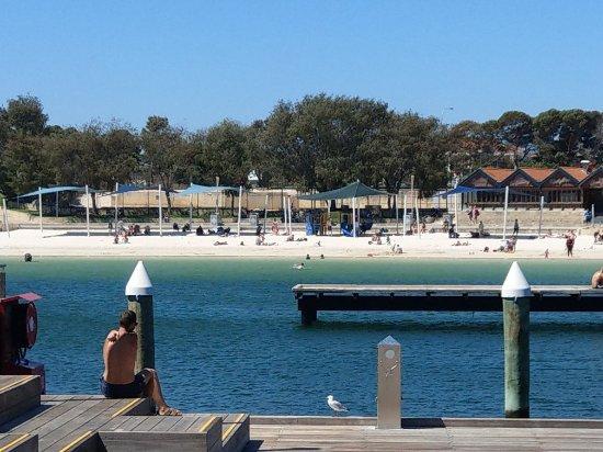 Hillarys Boat Harbour: IMAG2644_large.jpg