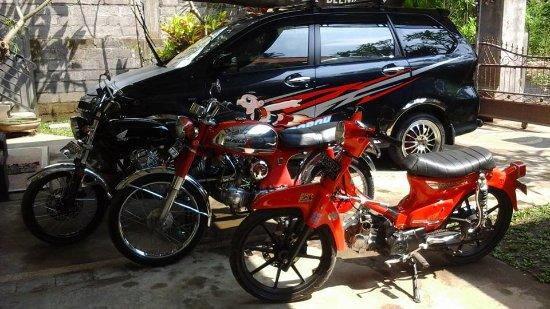 Банджар, Индонезия: our team