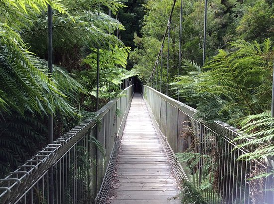 Corrigan's Suspension Bridge