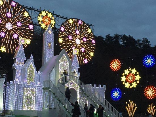 Ashikaga Flower Park Photo
