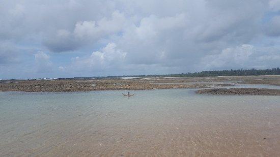 Quarta Praia : 20180217_113525_large.jpg