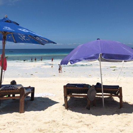 Nungwi beach, där soldyrkare, fiskare och middagsgäster om kvällen samsas om plats