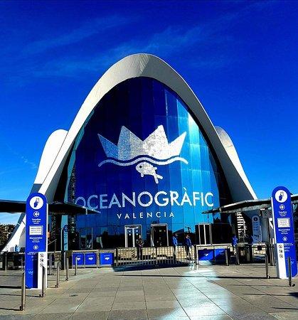 Oceanografic valencia picture of oceanografic valencia for Oceanografic valencia