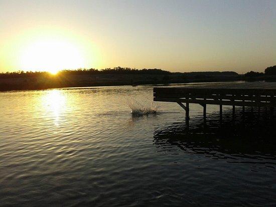 Malinki South Bird Park