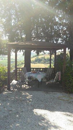 Montecarotto 사진