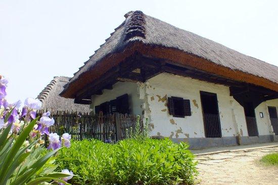 Gocseji Village Museum