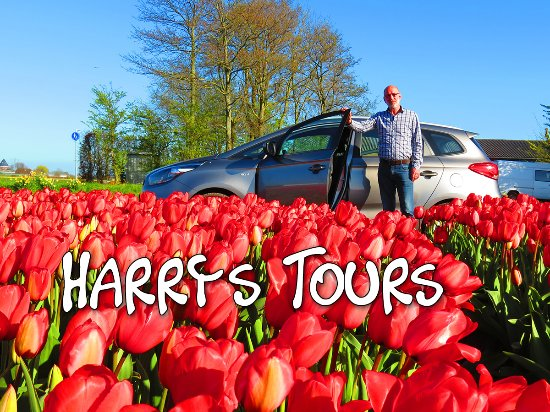 Harry's Tours Holland
