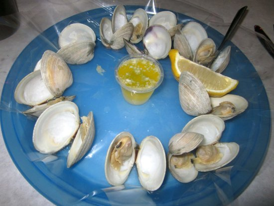 Levittown, PA: Steamed Little-neck Clams