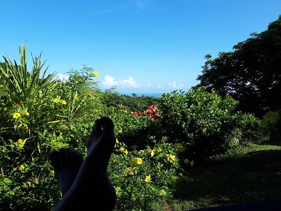 Labasa, Fiji: 20180218_085141_large.jpg