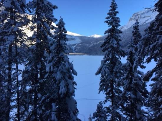 Emerald Lake Lodge: Spectacular View