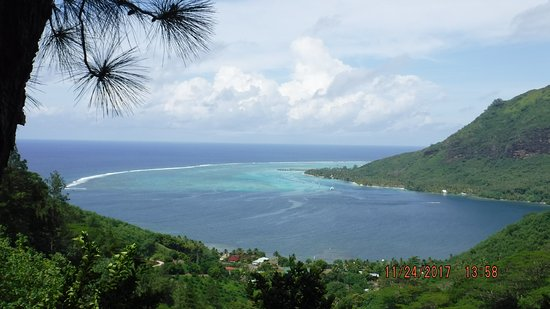 Papetoai, Polinesia Francesa: On our way to the top of Moorea