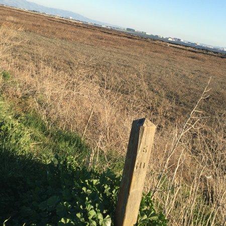 Alviso, Califórnia: photo0.jpg