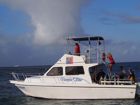 Ocean Encounters Diving Photo