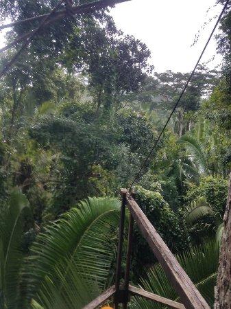 Belize Grand Jaguar Tours 사진
