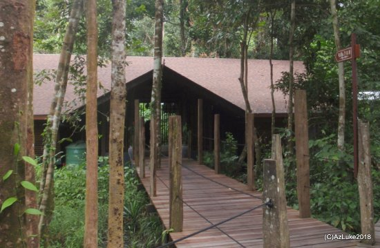 Sukau Rainforest Lodge: Villa Duplex.