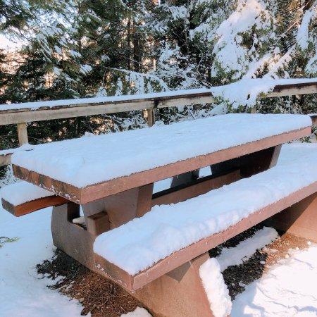 Lynn Canyon Park: リン キャニオン パーク