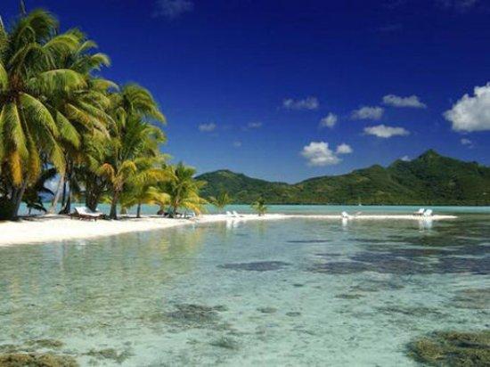 Vahine Island, Polynésie française : Beach