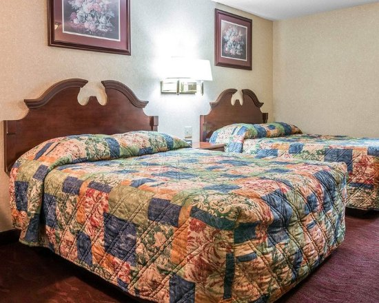 Madison Heights, MI : Guest room