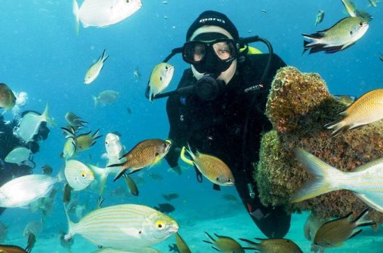 Fuerteventura 2-Day 4-Dive Scuba ...