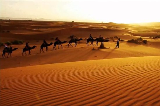 Sahara Desert Merzouga 3-Day from...