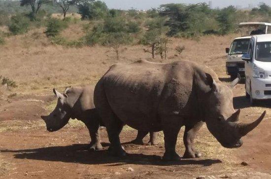 1Full Day Nairobi Nationalpark...