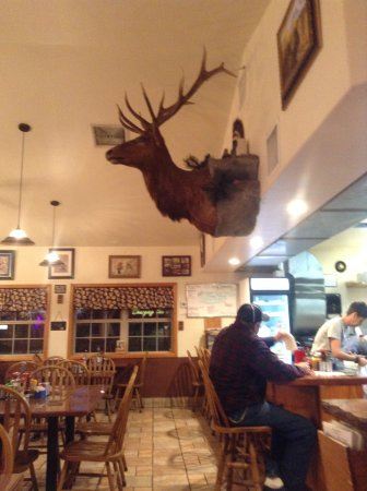 Colorado City, CO: Watchful eye over counter, dining area, beware hunters:))