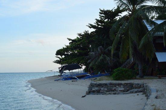 Modessa Island Resort Tripadvisor