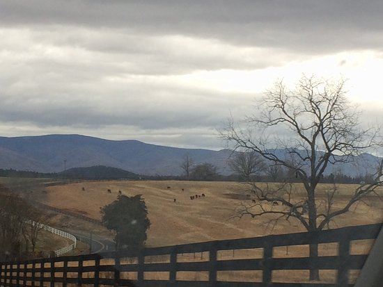 Steeles Tavern, VA: Love, love these mountain views on our drive.