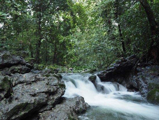 Hotel Finca Tatin: Cascades Rio Tatin