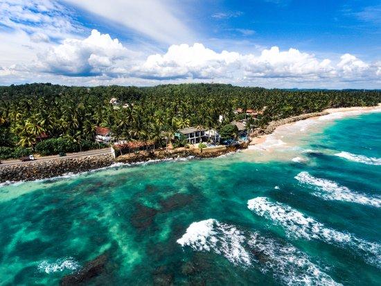 Шри-Ланка - Аюрведа, йога и спа-отдых по самым выгодным ценам | 412x550