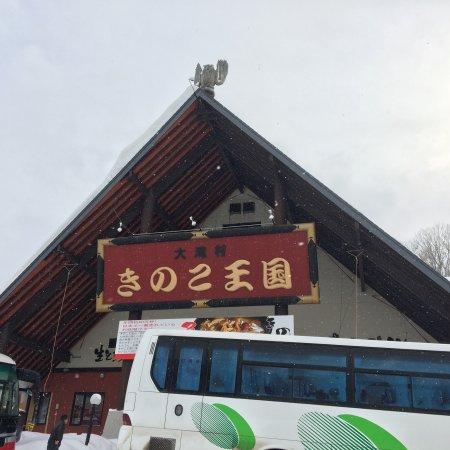 Kinoko Okoku Kimobetsu