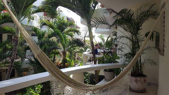 Playa Palms Beach Hotel: 20180211_095337_large.jpg
