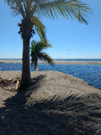 Laguna Ventanilla: IMG_20180203_120018262_large.jpg