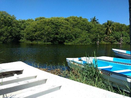 Laguna Ventanilla: IMG_20180203_115511920_large.jpg