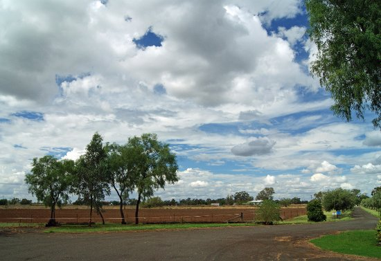 Wee Waa, Australia: Seplin Estate Winery