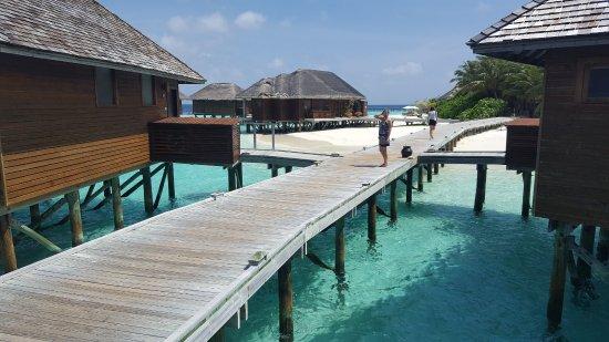 Vakarufalhi Island Photo