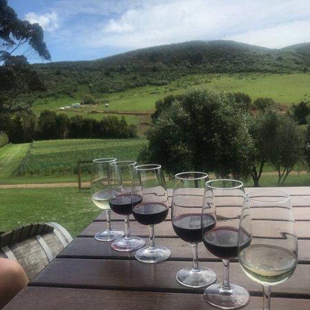 Onetangi, Nueva Zelanda: Stonyridge Vineyard