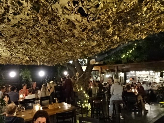 Chalk and Cork: Under the trees and canopy in the evening.  Great patio
