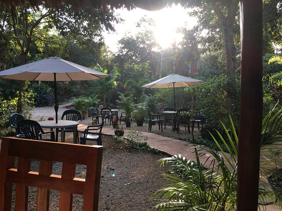Santa Elena, Mexico: Ausblick beim Frühstück