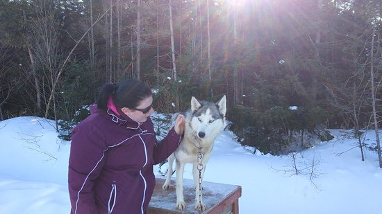 Val-des-Lacs, Canada: IMG_20180219_100930_large.jpg