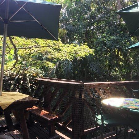 Illovo Beach, Sudafrica: Terrace Tea Garden