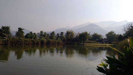 Bueng Pai Farm: P_20180217_085508_large.jpg