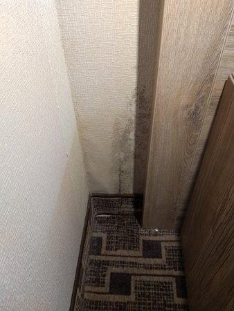 Decke mit Wasserschaden im Bad - Bild von XO Hotels Blue Square ...