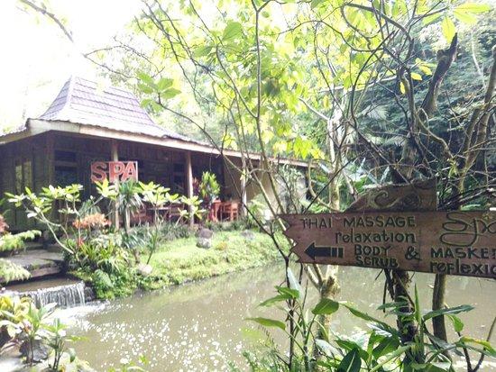 New Experience Back to Nature Hotel  ! Rekomended buat kamu bulan madu atau melepas penat!