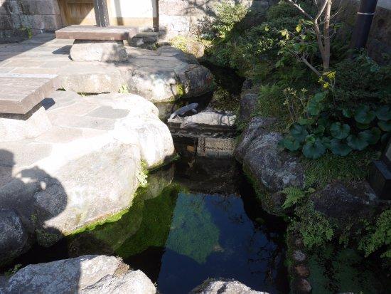 Shimabara Spring Group