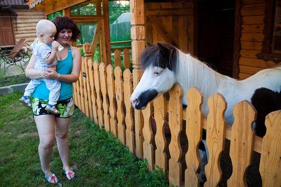 Verkhny Ufaley, Rússia: Контактный зооуголок
