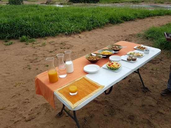 Ruaha National Park, Τανζανία: Breakfast in the river bed!